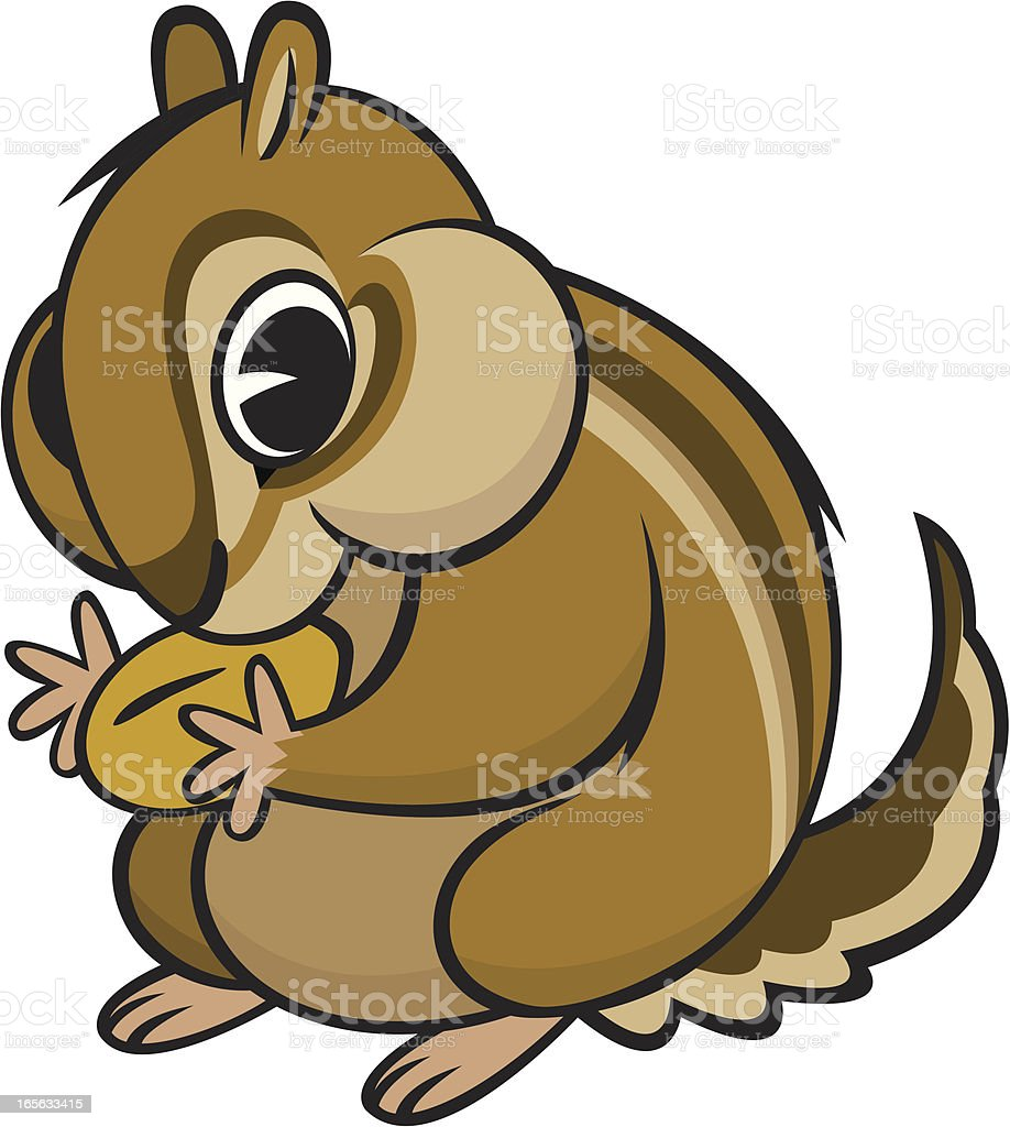royalty free chipmunk clip art vector images illustrations istock rh istockphoto com  baby chipmunk clipart