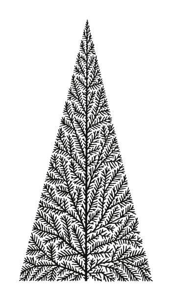 bildbanksillustrationer, clip art samt tecknat material och ikoner med chistmas träd - ädelgran