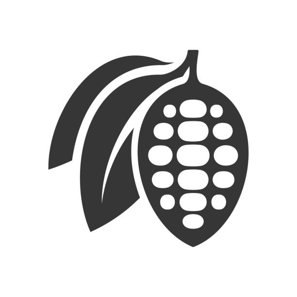 chocolate cocoa beans icon on white background. vector - plant pod stock illustrations