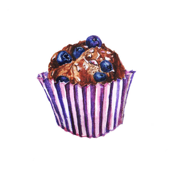 71 Chocolate Chip Muffin Illustrations Clip Art Istock