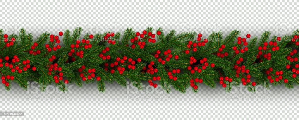 christmas and new year border of realistic branches of christmas tree and holly berries royalty