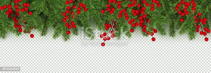 istock Christmas and New Year border of realistic branches of Christmas tree and holly berries 974254542