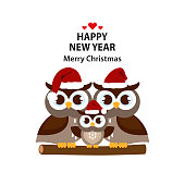 Christmas and New Year greeting cardwith Cute owls.