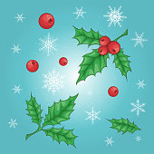 istock Christmas and New Year holly berry icon collection. Vector 1064997762