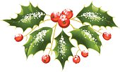 Christmas and New Year Vector holly decoration