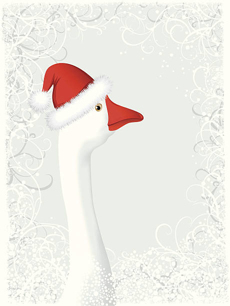 Christmas background with goose Christmas background with goose; zip includes aics2, high res jpg snow goose stock illustrations