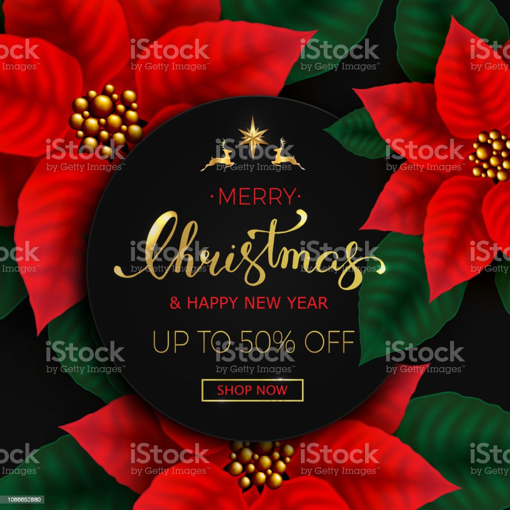 christmas background with poinsettia flowers sale banner