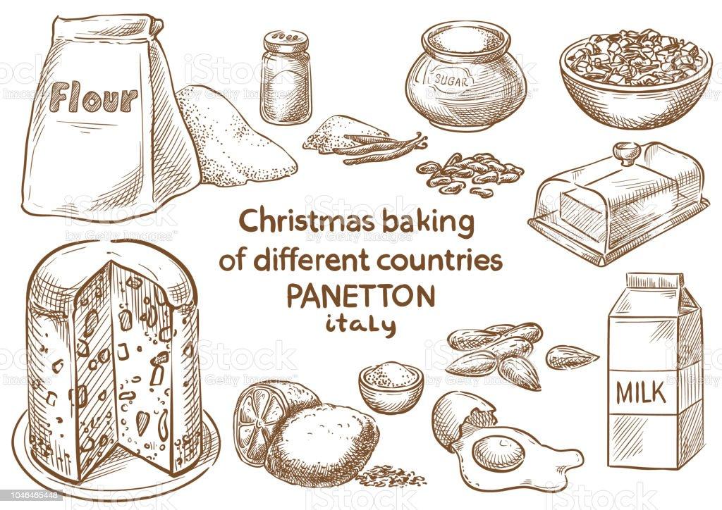 Christmas baking. Ingredients.Panetton.Italy vector art illustration