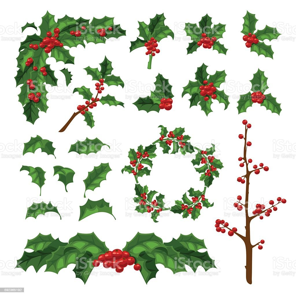 Christmas berry decoration vector set. vector art illustration