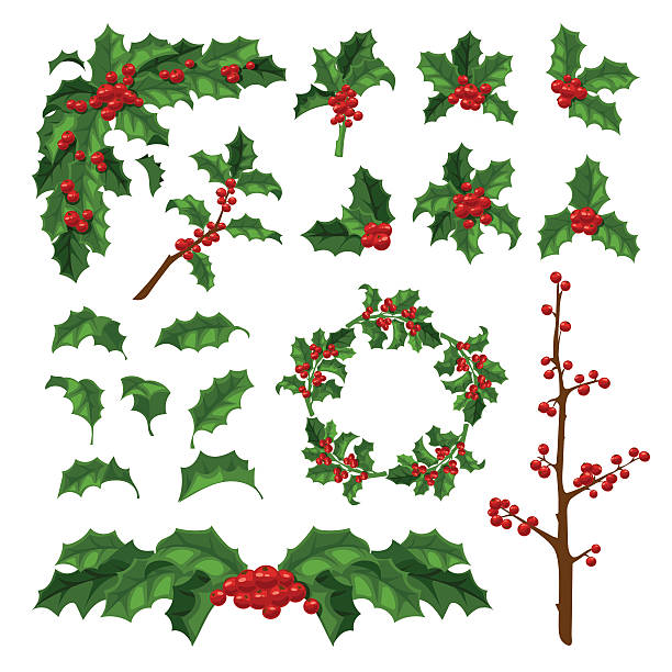 bildbanksillustrationer, clip art samt tecknat material och ikoner med christmas berry decoration vector set. - dekor