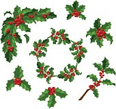 Christmas berry decoration vector set.