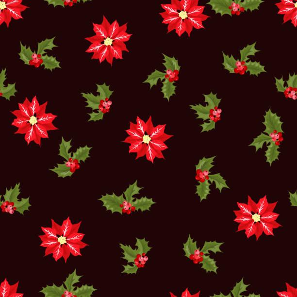 Vectores De Flor De Nochebuena Euphorbia Pulcherrima Botanical