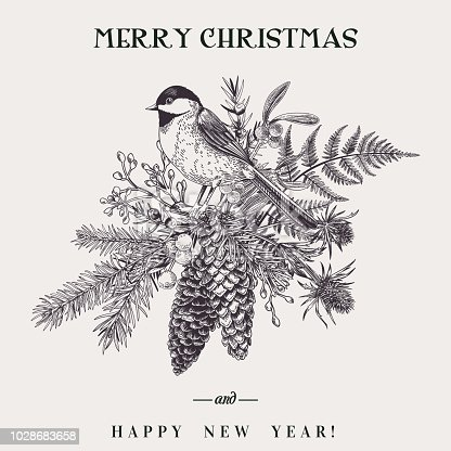 Vector illustration with a bird and a Christmas bouquet. Botany. Fern, spruce, cone, juniper, thistle, mistletoe, snowberry and titmouse. Vintage style. Engraving. Black and white.