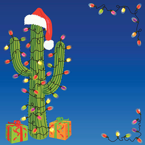 Christmas Cactus Clipart.Best Christmas Cactus Illustrations Royalty Free Vector