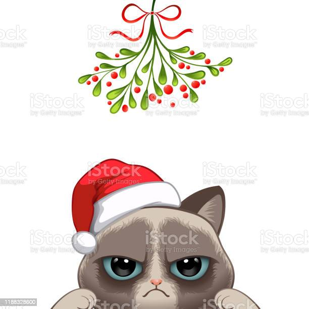 Christmas card portrait of cute cat character design vector id1188328600?b=1&k=6&m=1188328600&s=612x612&h=jub4 9f0ics4fcj2liihhrxkqofcz187m89fe9u fck=