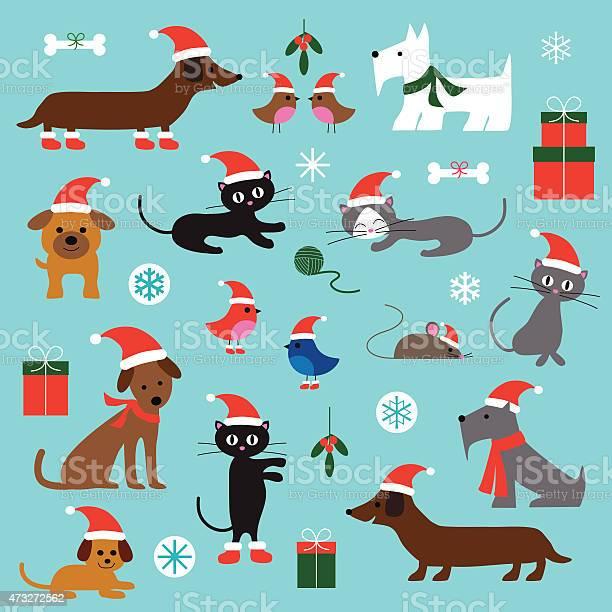 Christmas cats and dogs vector id473272562?b=1&k=6&m=473272562&s=612x612&h= pybp9mjm1ycid74dqp1m0koszeewsncx13pwiq0d1o=
