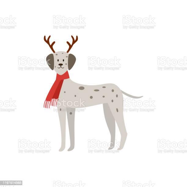 Christmas dalmatian dog wearing deer antlers and red festive scarf vector id1197614565?b=1&k=6&m=1197614565&s=612x612&h=db2ahbgrx4kyvffqjegc4fql0cgglubptjdsfswdiek=