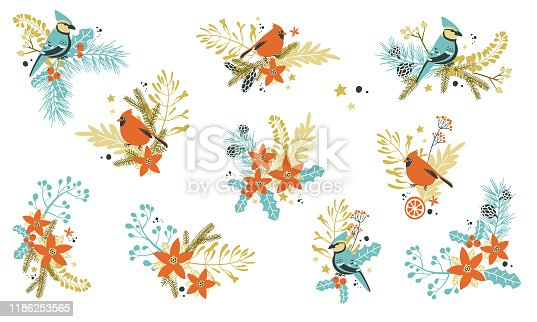 Christmas decorative compositions with traditional plants and birds. Vector illustration