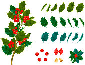 Christmas decorative leaves holly and branches with red berries winter flower for your design. Vector set of season celebration evergreen floral berry plant.