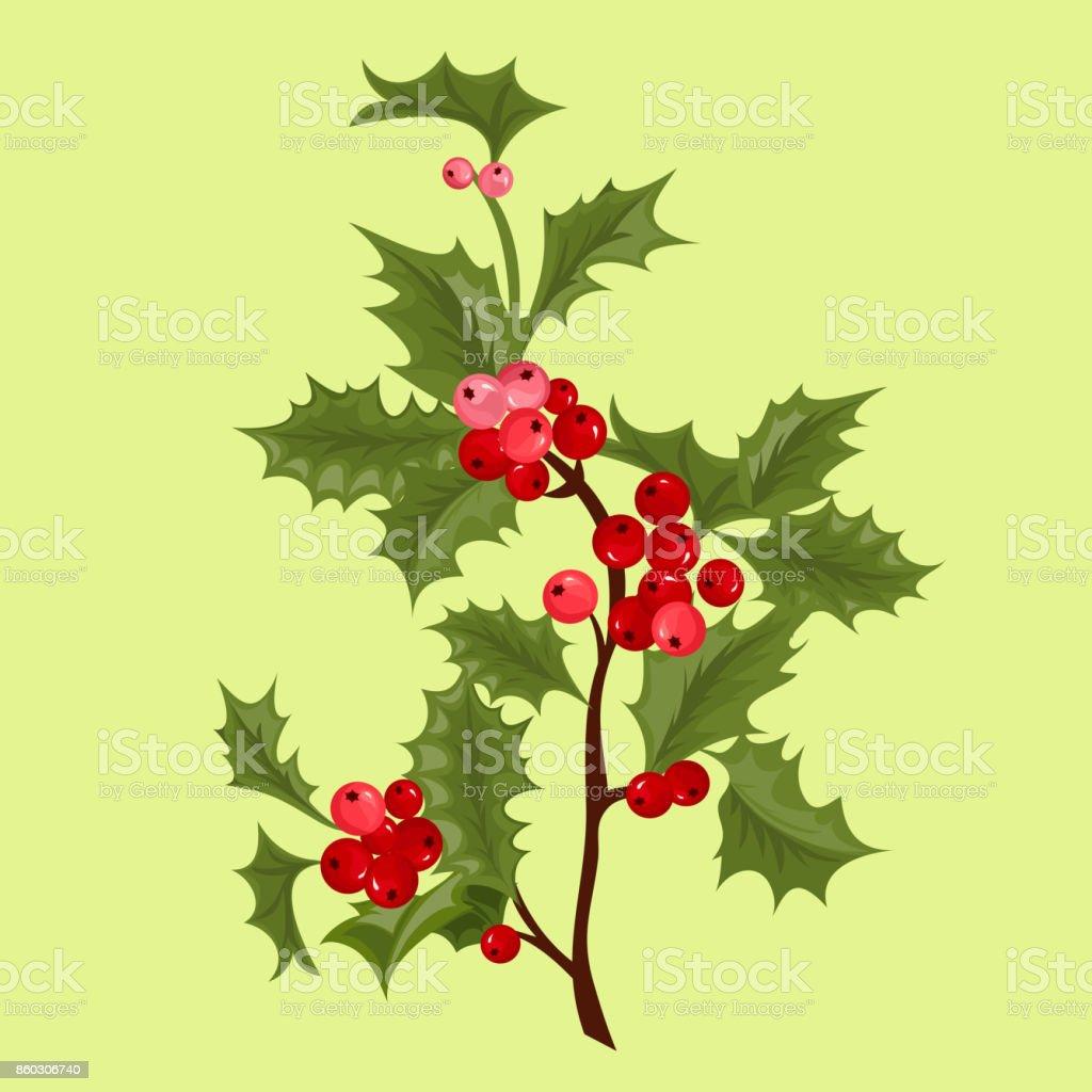Plantas De Navidad Acebo. Cheap Acebo Planta Navidad Csp With ...