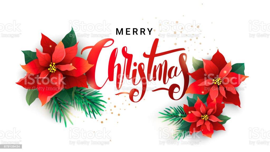 Weihnachtsmotive Zum Kopieren.Weihnachtsmotiv Von Tannenzweigen Und Weihnachtsstern Stock Vektor