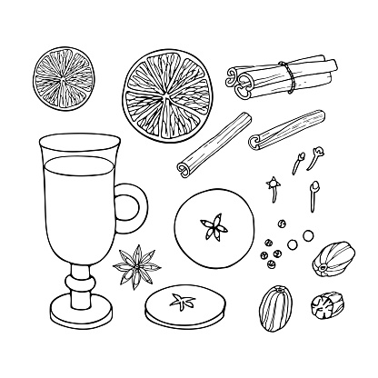 Christmas drinking. Mulled wine ingredients set. Fruit mulled wine recipe. Doodle Outline vector illustration. Hot winter drink recipe. Organic product sketch. Flavor cooking ingredient.