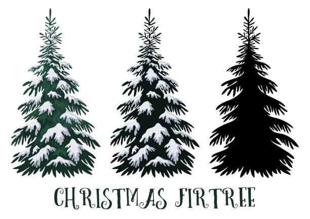bildbanksillustrationer, clip art samt tecknat material och ikoner med fir julgran - ädelgran