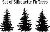 Christmas Fir Trees Silhouettes