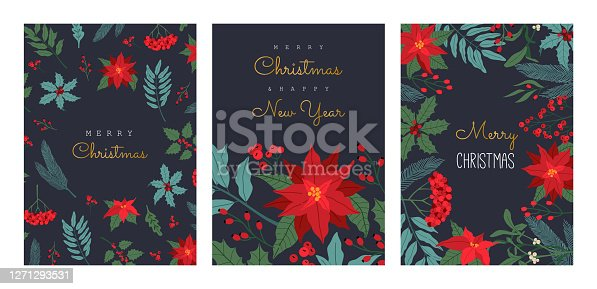 Set of Christmas greeting card, with winter plants, poinsettia, invitation for party, traditional symbol, horizontal frame. Vector illustration in flat cartoon style, isolated on dark blue background.