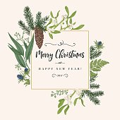 Christmas holiday frame in vintage style. Greeting invitation card. Botanical illustration with pine branches, pine cones, mistletoe, fern.