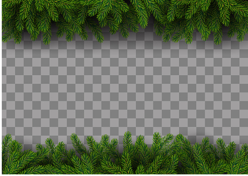 Christmas frame with fir tree