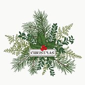 Christmas bouquet with space for text. Pine, fern, boxwood, holly. Botanical illustration.