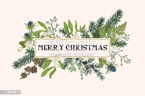 istock Christmas frame with winter plants. 1175829915