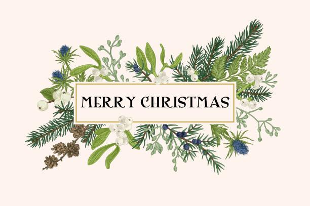 Christmas frame with winter plants. vector art illustration