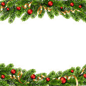 Christmas green Pine Branches and red baubles. Vector illustration