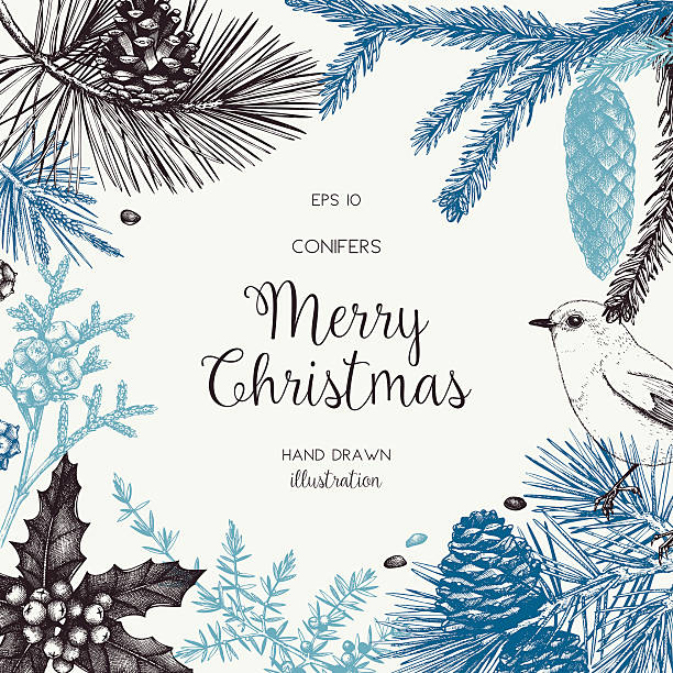 Christmas greeting card or invitation design. Vector frame with hand drawn conifers sketch. Vintage background with pine, spruce, cedar, cypress, fir, larch and juniper illustration. bird backgrounds stock illustrations