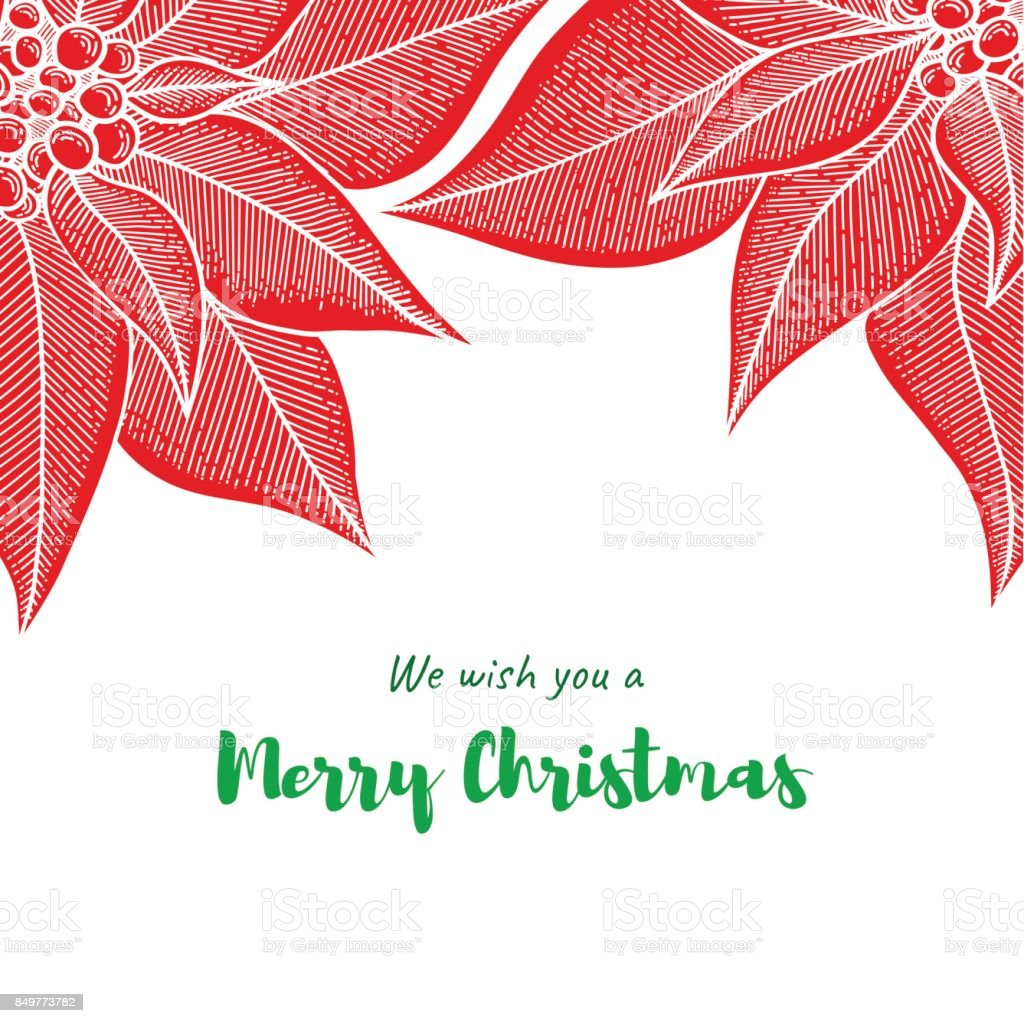 Christmas greeting card template with hand drawn Poinsettia flower on white background vector art illustration