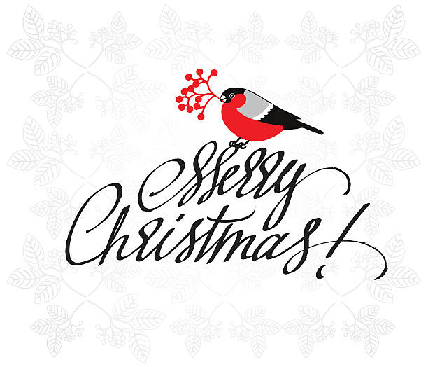 Christmas Greeting Card with bullfinch and handdrawn lettering. - Illustration vectorielle