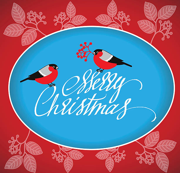 Christmas Greeting Card with bullfinches and handdrawn lettering. - Illustration vectorielle