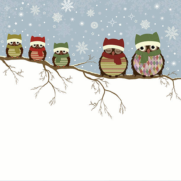 stockillustraties, clipart, cartoons en iconen met christmas greeting card with family of owls - family winter holiday