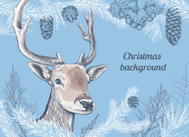 Christmas hand drawn background with deer - illustrazione arte vettoriale