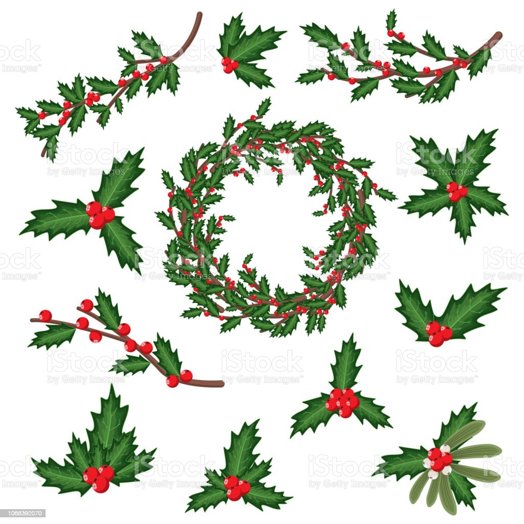 Christmas Holly Cartoon.Christmas Holly Berry Leaves Sprig Wreath And Branches