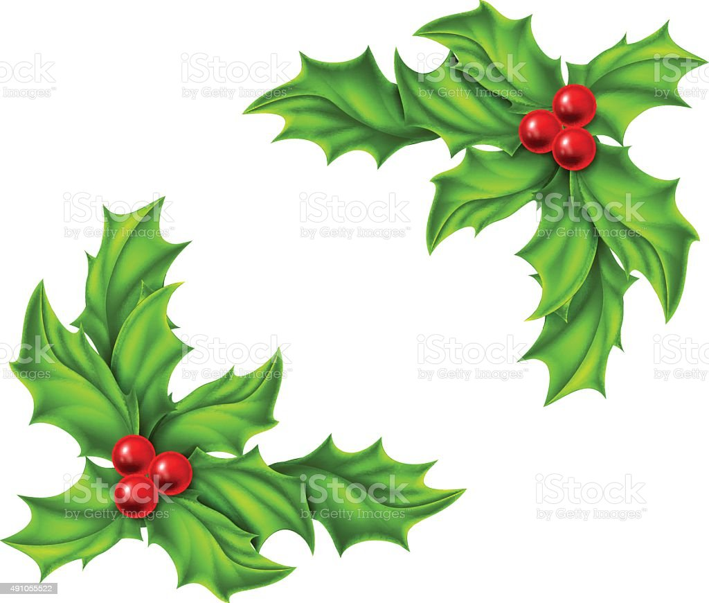 Christmas Holly Design vector art illustration