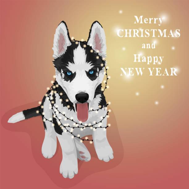 Husky Christmas Cards.17 Siberian Husky Christmas Cards Clip Art Vector Graphics