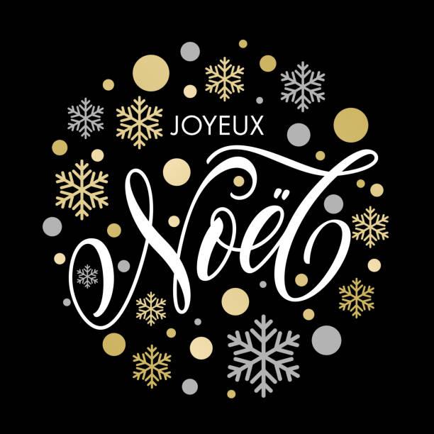 Christmas in French Noel text ornament for greeting card – Vektorgrafik