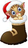 Christmas kitten in santa boots
