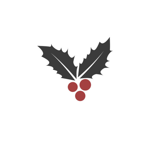 Christmas leaf and berry icon vector art illustration