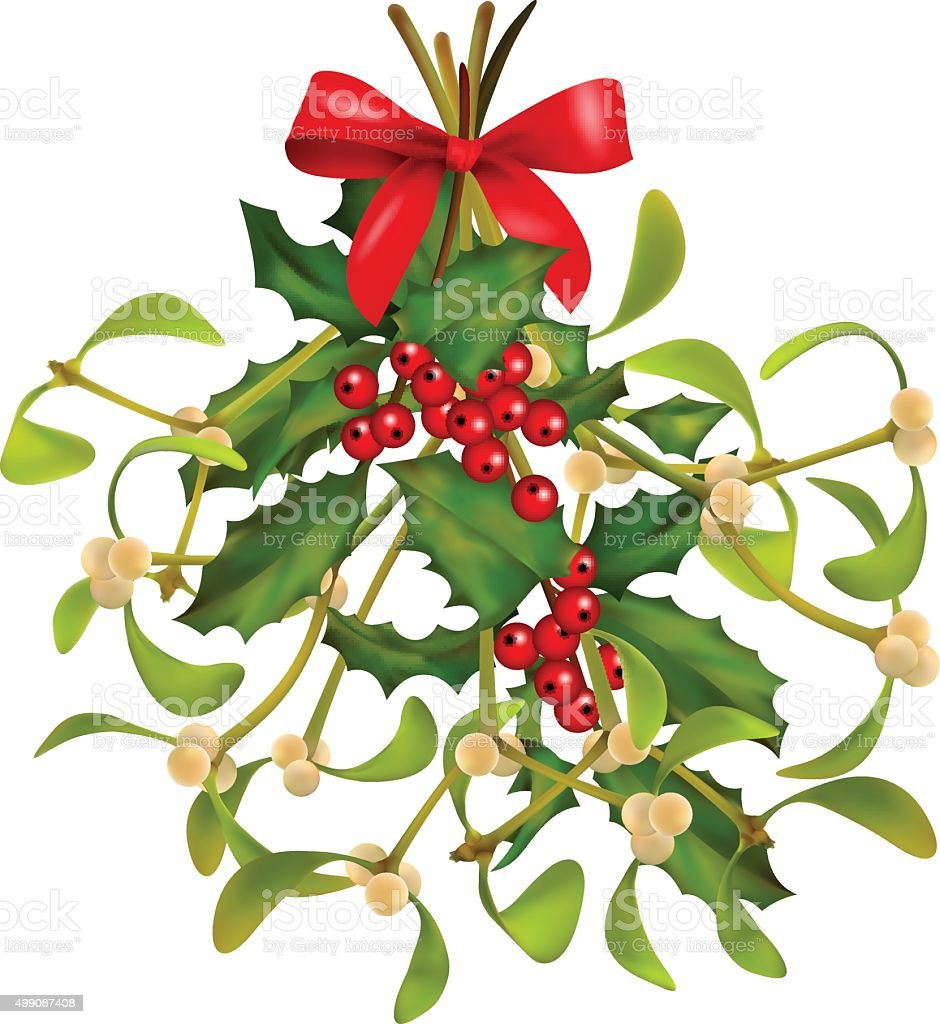 Christmas Mistletoe and Holly bouquet vector art illustration