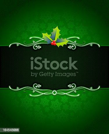 istock Christmas Mistletoe on green Holiday Card Background. 164545688