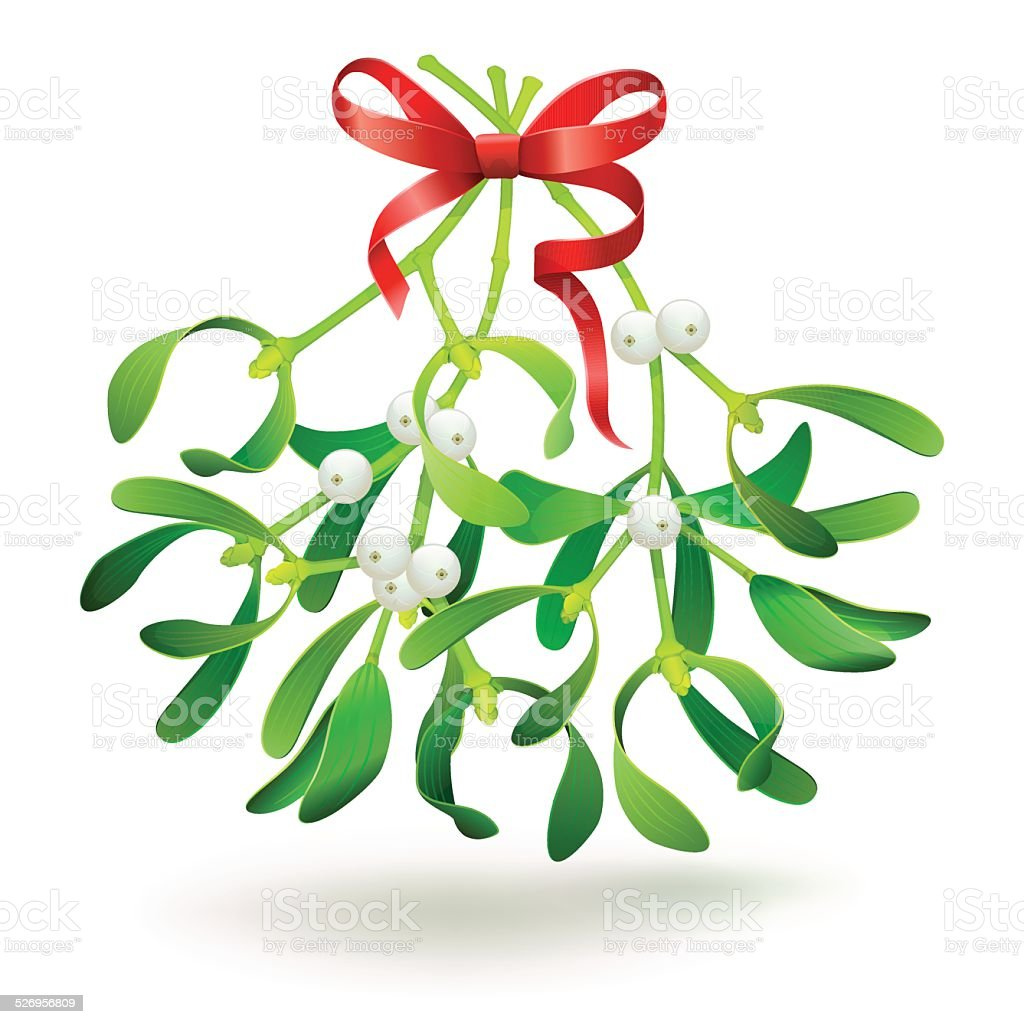 Christmas mistletoe with a red bow. vector art illustration